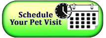 schedule a pet visit with AllenPetCare.com
